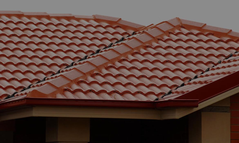 Zip Clip Roof